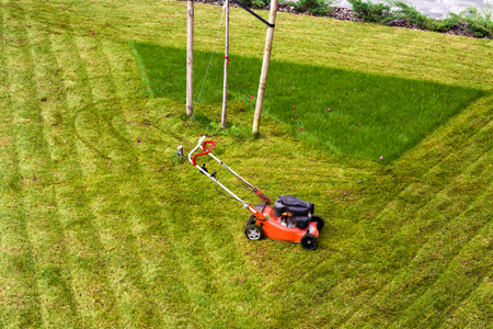 Lawnmower in field for ground care / landscaping